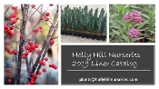 2019 Holly Hill Nurseries Catalog